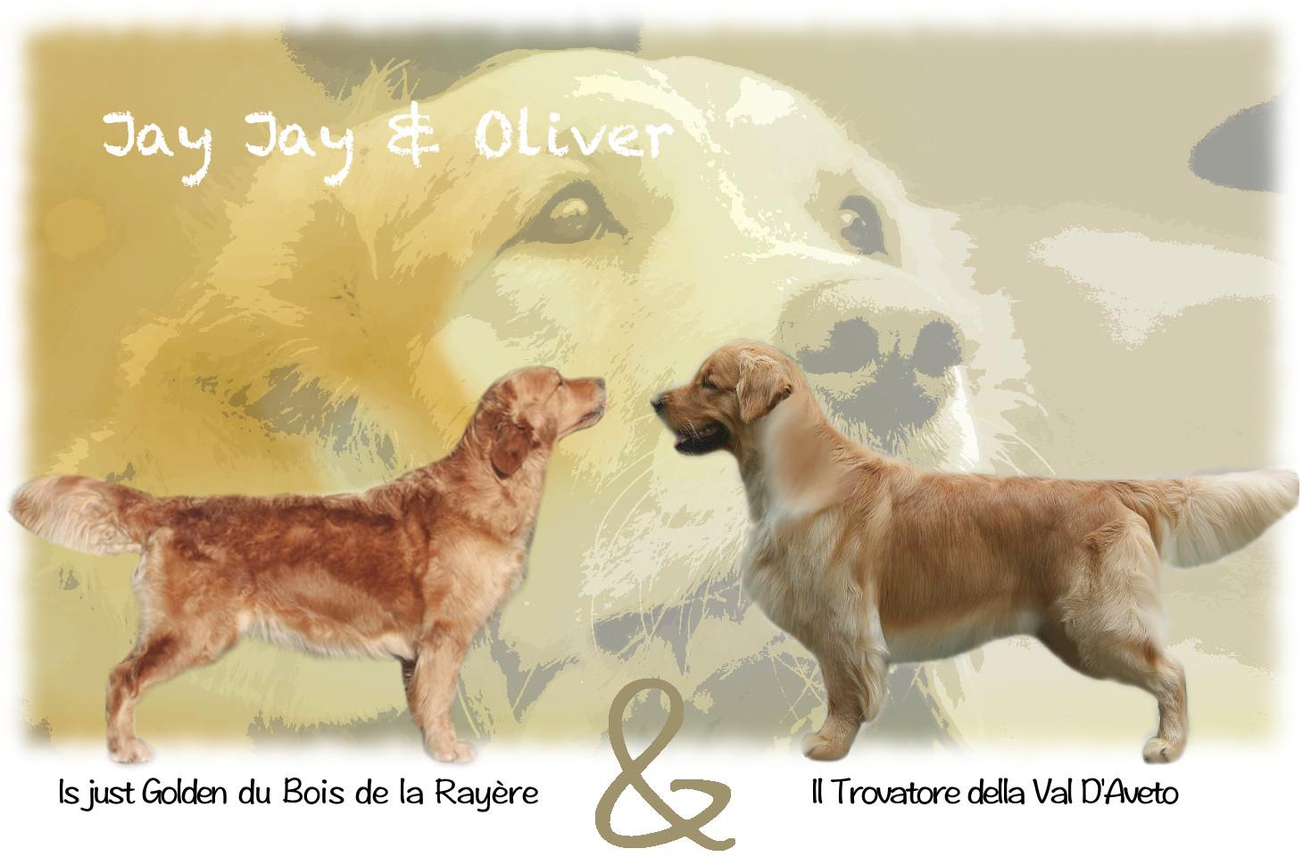 JJ x Oliver