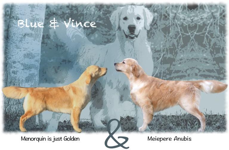 Blue x Vince