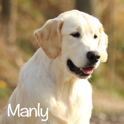 Manly al cubo2