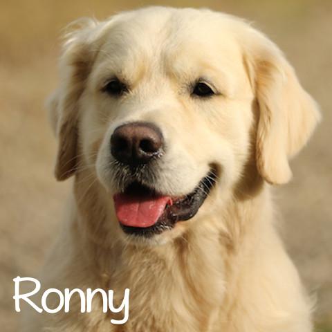 Ronny al cubo2